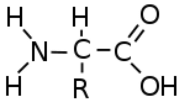 Rumus Kimia Asam Amino