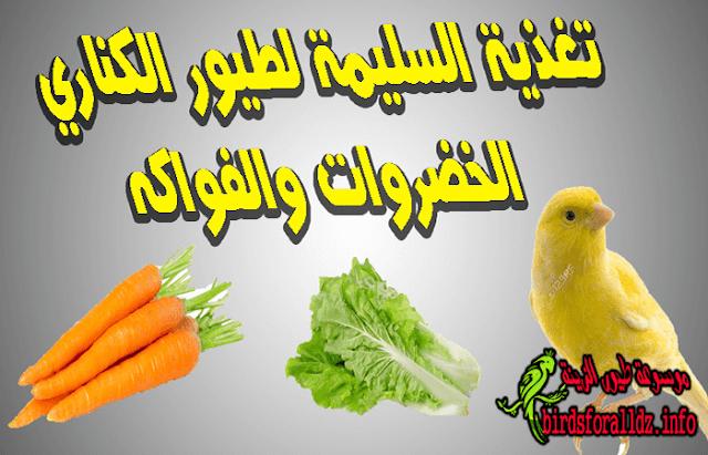 تغذية طيور الكناري : الخضروات والفواكه