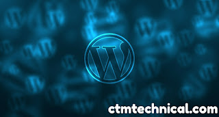 what is web hosting and how does it work ? , WordPress hosting