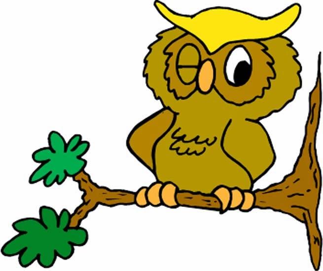 owl humor reading - photo #23