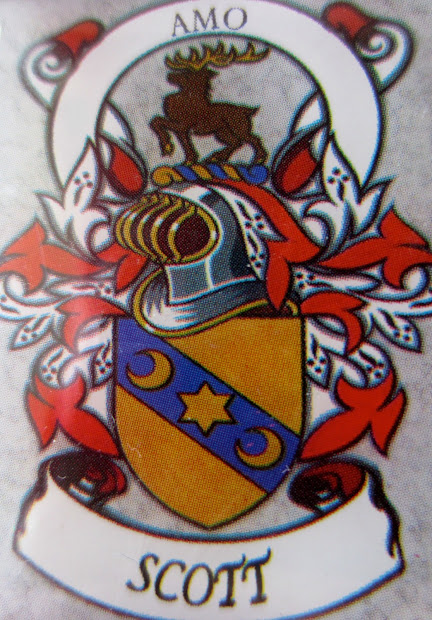 Johnson Family Crest - Year of Clean Water
