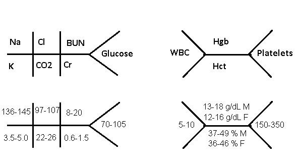 lab values diagrams electrolytes