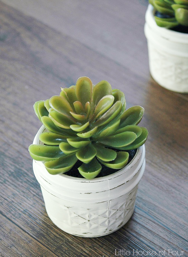 Dollar Tree succulent planter