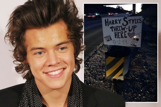 Harry Styles Got a Bird Poop Facial Because Birds Are So ... |Harry Styles Pooping