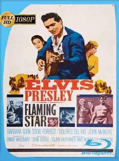Estrella de fuego (1960) HD [1080p] Latino [Mega] dizonHD