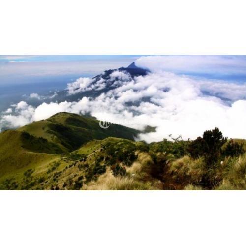 Mau Lihat Warung Tertinggi di Jawa? Yuk Ikut Mendaki Gunung Lawu, 15-16 Oktober 2016!