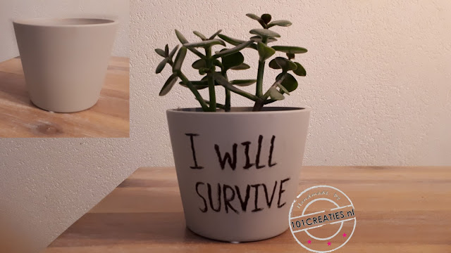 handlettering plantenpot