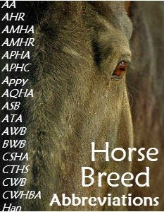 Horse Breed Abbreviations | Savvy Horsewoman