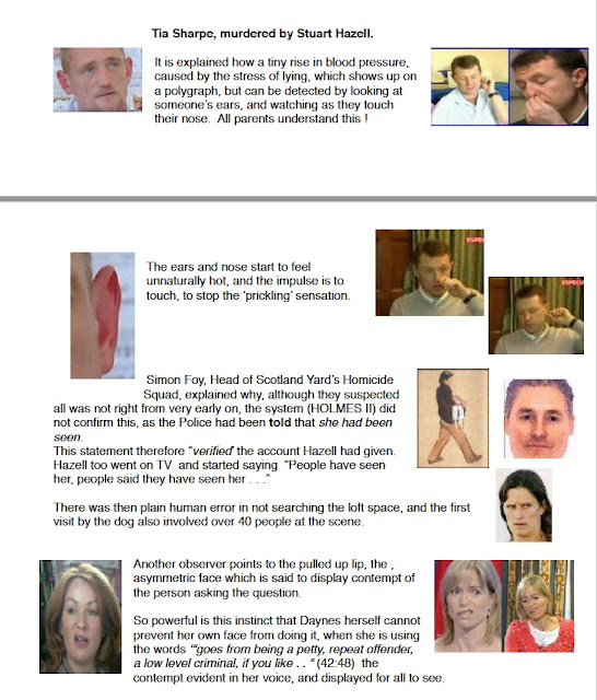 PeterMac's FREE e-book: What really happened to Madeleine McCann? Faking%2Bit%2B2