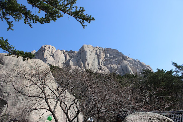 Gunung Logan