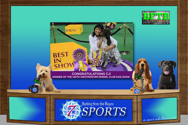 BFTB NETWoof Dog Sport anchor desk with Westminster Best in Show winner