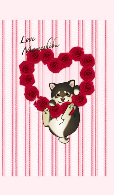 Valentine love Mameshiba dog