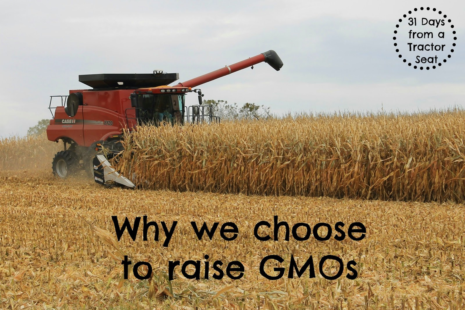 31 days from a Tractor Seat - Why we choose to raise GMOs