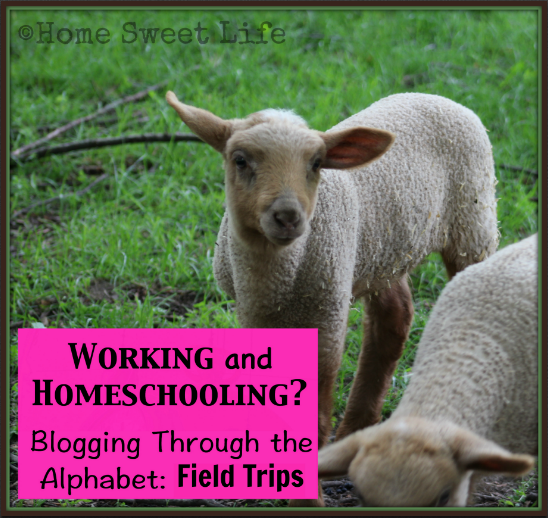 Blogging through the alphabet, Letter F, Field Trips, Road Trips