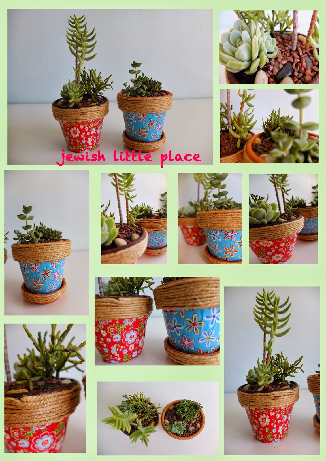 Lekhayim decoreted pots with succulents vasi decorati - Vasi con piante grasse ...