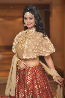 Mehek in Designer Ethnic Crop Top and Skirt Stunning Pics March 2017 042.JPG