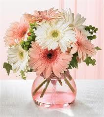 Tynte Street Flowers Flower Arrangement Themes
