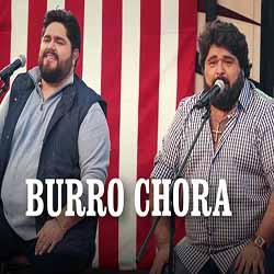 Baixar Burro Chora - César Menotti & Fabiano Mp3
