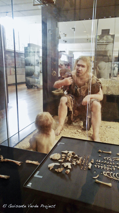 Bebé Neardental Museo Nacional de Prehistoria, Les Eyzies de Tayac - Dordoña Perigord por El Guisante Verde Project