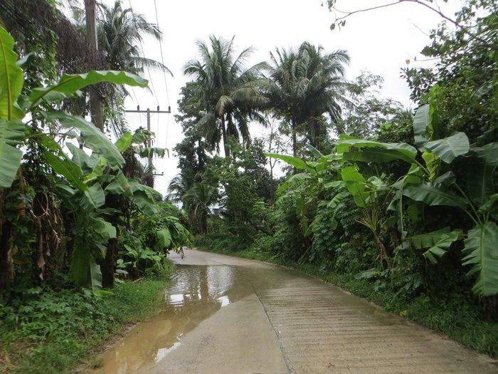 Лужа на дороге Таиланд