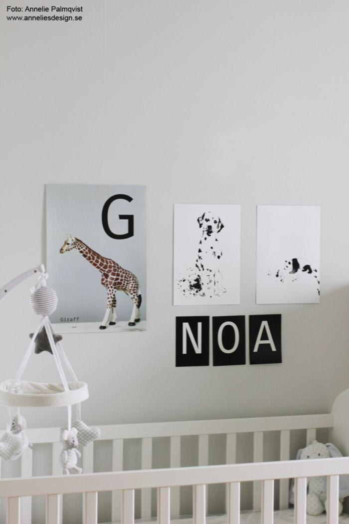 annelies design, webbutik, webbutiker, webshop, nätbutik, poster, posters, tavla, tavlor, panda, giraff, dalmatin, dalmatiner, barnrum, barnrummet, inredning, dekoration, väggar,