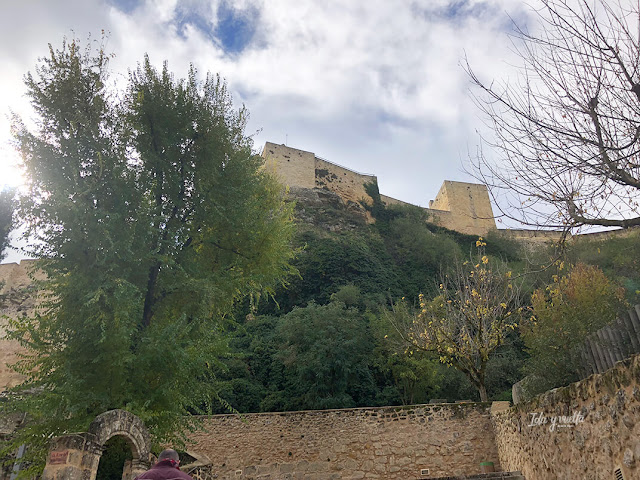 Fortaleza de La Mota desde abajo