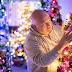 Elképesztő ünnepi hangulat: 100 karácsonyfával díszítette fel otthonát a pár