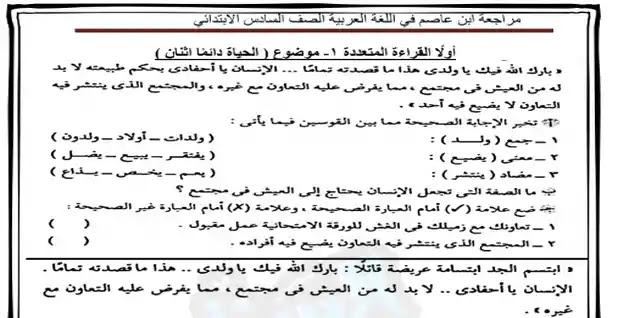 مراجعة نهائية فى اللغة العربية للصف السادس الابتدائي الترم