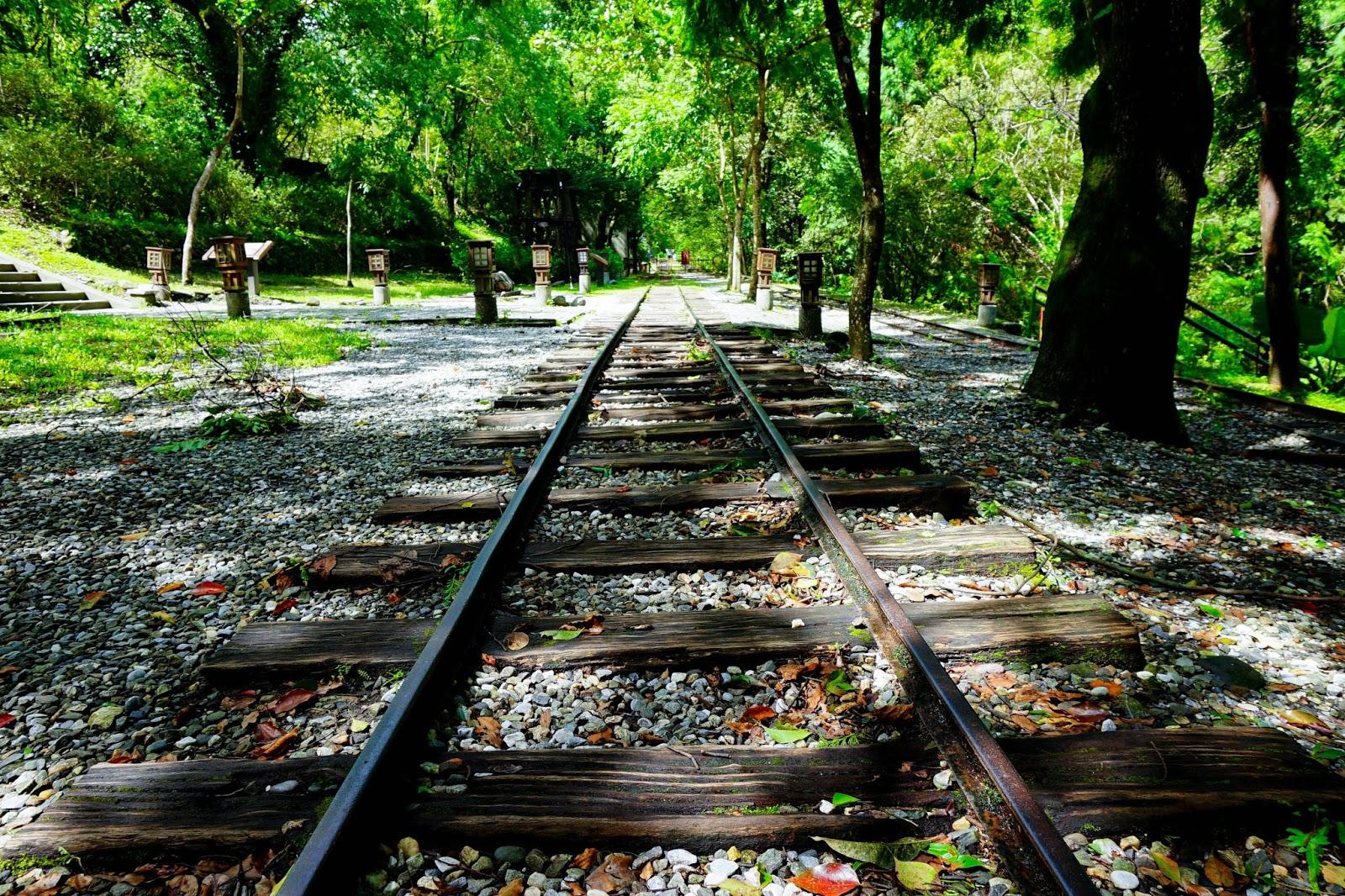 beautyanxiety.com-beautyanxiety.com-cultural-park-forest-DSC08489.jpg