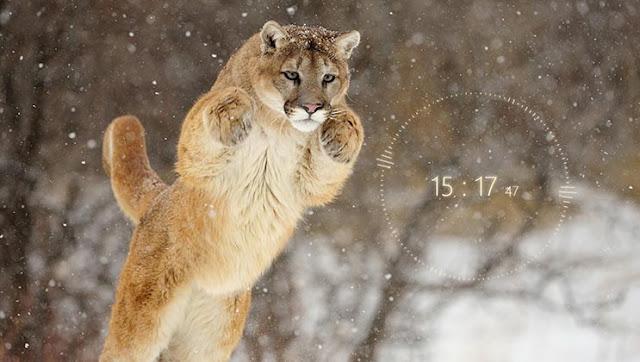 4K Big Cat With Audio Vizualizer Wallpaper Engine