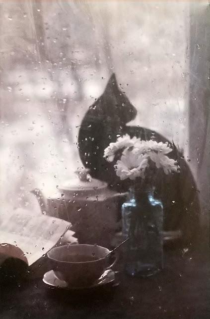 """межрегиональная выставка фотонатюрморта """"Весь мир - театр. Внимание на экспериментальную сцену!"""":  Лилия Родионова - Дождь..."""