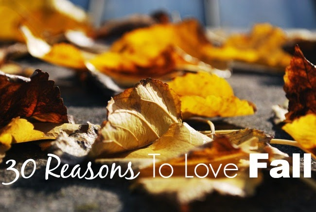 fall season, fall in ND, why you should love fall, the best parts about fall, changing seasons, season changing into fall, fall accessories, fall fashion, fall football, falling into fall