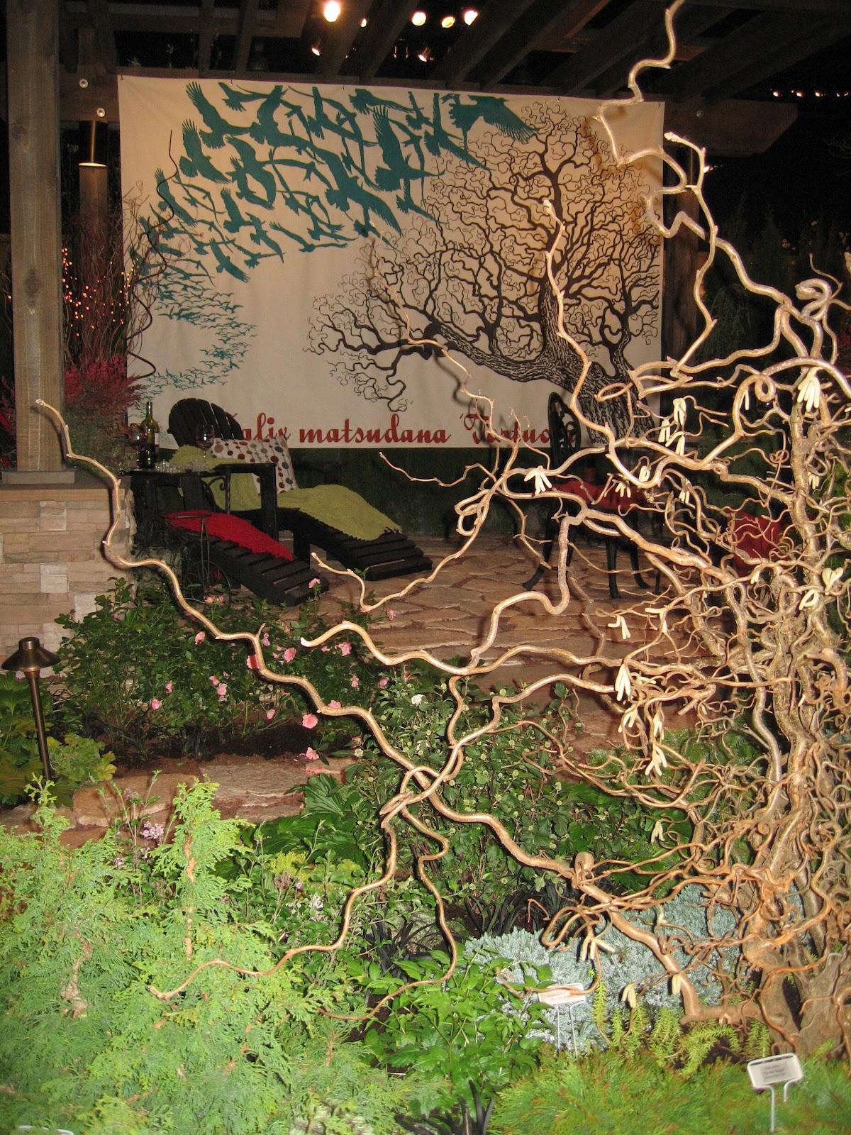 Kgk Gardening Landscape: Polka Dot Galoshes: Plants + Music + Discovery = One