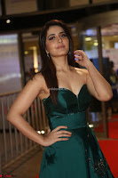 Raashi Khanna in Dark Green Sleeveless Strapless Deep neck Gown at 64th Jio Filmfare Awards South ~  Exclusive 067.JPG