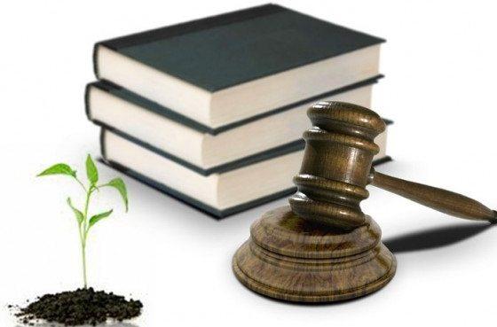Importancia de la Legislación Ambiental
