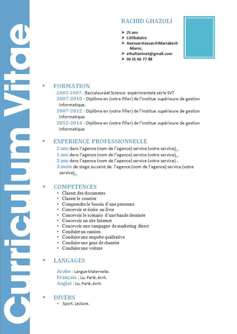 comment faire un cv  cv model originale style simple