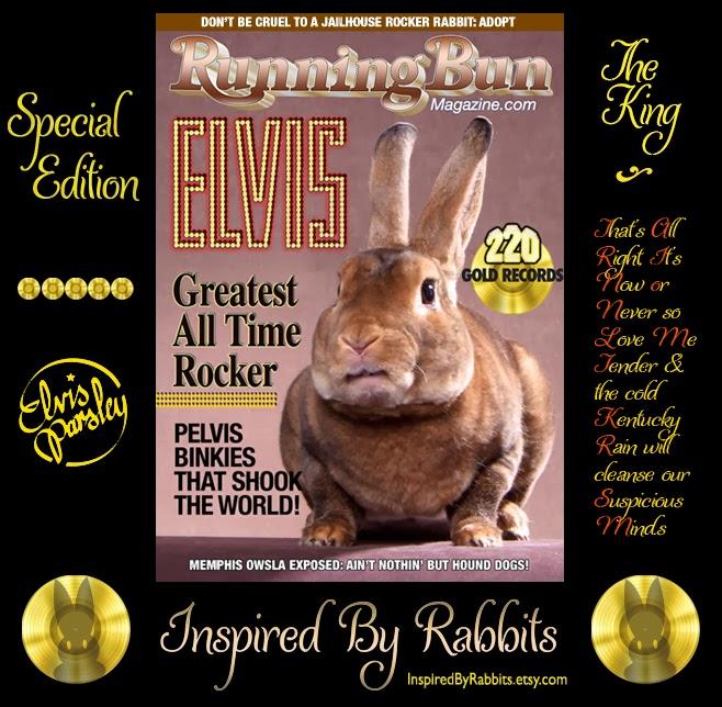 Elvis Parsley the King of Rock