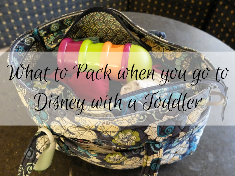 Sweet Turtle Soup - What to Pack for a Trip to Disney with a Toddler