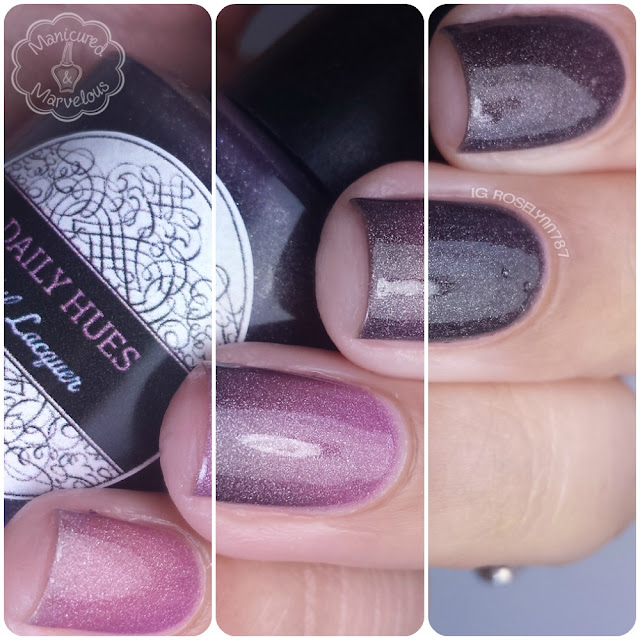 Daily Hues Lacquer - 2 Hues & Many More