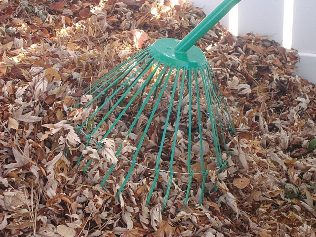 How Rake Leaves Fast