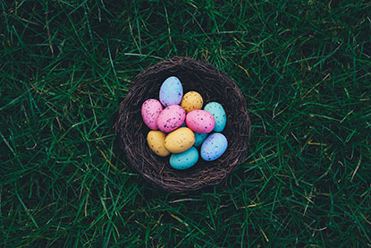 An Easter egg hunt with Cats Protection