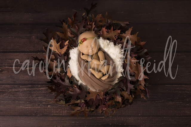 https://www.etsy.com/de/listing/547547306/digital-backdrop-newborn-fall-winter?ref=shop_home_active_4