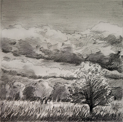 Katherine Kean, drawing, graphite atmospheric, Scotland, trees, field