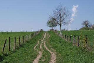 Ein Feldweg führt einen kleinen Hügel hinauf. Rechts und links stehen Zäune