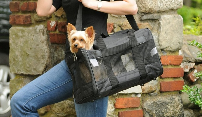 Sherpa Dog Carriers