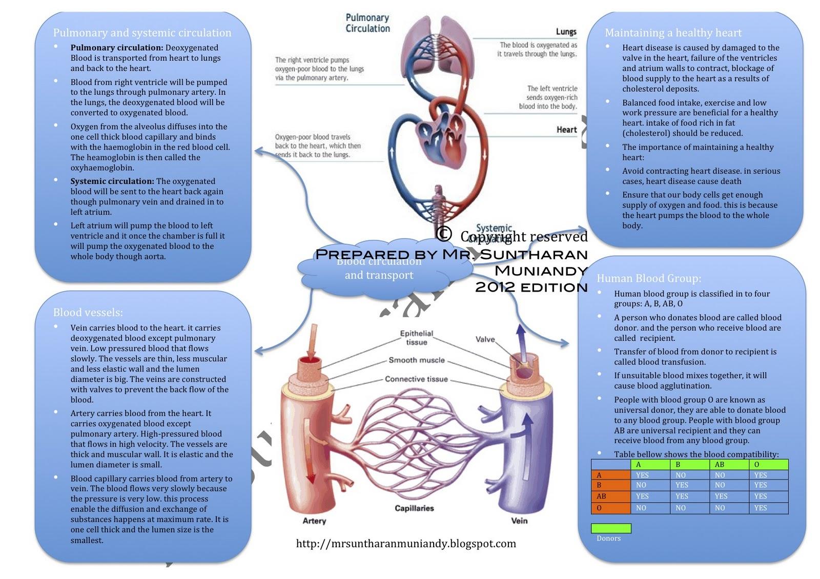 Form 4 spm Biology Notes