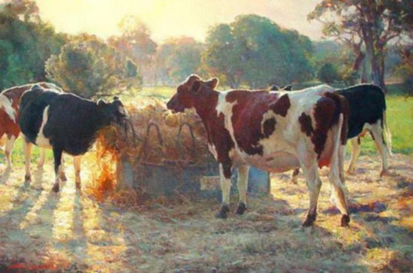 Im genes arte pinturas paisajes de campos con vacas pintados al leo - Cuadros de vacas ...