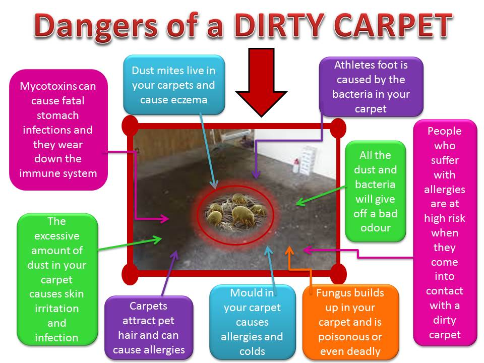 Why Do We Need Professional Carpet Cleaning Service