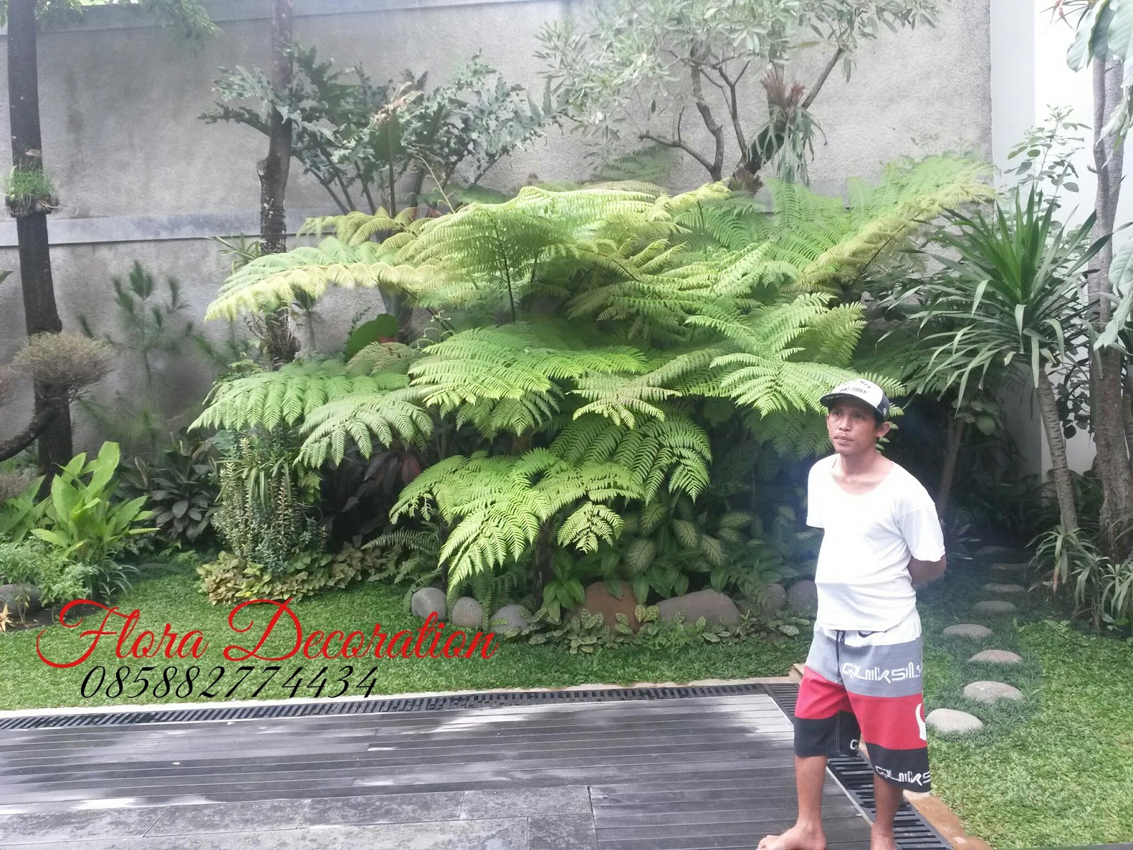 Tukang Taman Murah  tukang tamantanaman hiastanaman