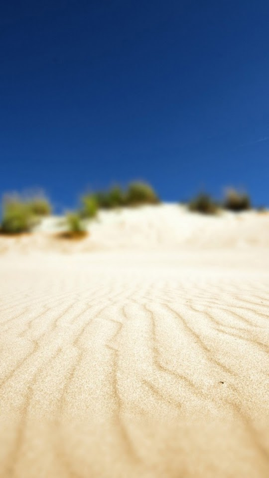 Desert Sand Dune Focus  Galaxy Note HD Wallpaper
